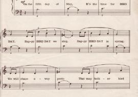 Happy Bird Day - Music Score