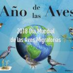 2018 Facebook Banner- Spanish