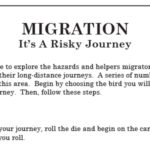 The Migration Game - English