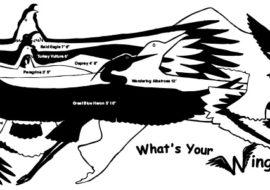 Wingspan Banner
