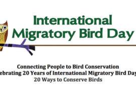Twenty Ways To Conserve Birds