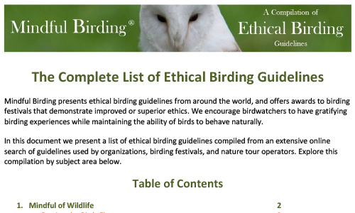 Guidelines For Mindful Birding