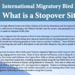 Stopover Sites Factsheets - English