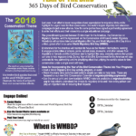 2018 Conservation Theme Flyer