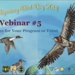 WMBD 2018 Mini-Webinar: Fun activities for your Program or Event