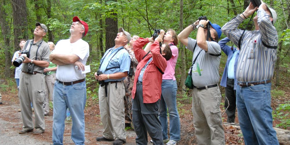 Bird watchers scan the treetops of the wooded area near Luna Lake during a bird walk Saturday. About 50 species of birds were spotted during the three-hour tour.  U.S. Air Force photo by Wayne Crenshaw
