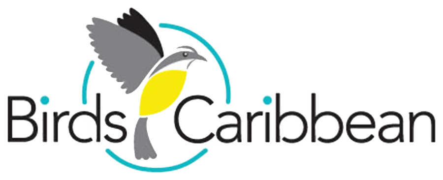 Birdscaribbean 3 Color Logo Main Bigger Canvas Rbg Copy World Migratory Bird Day