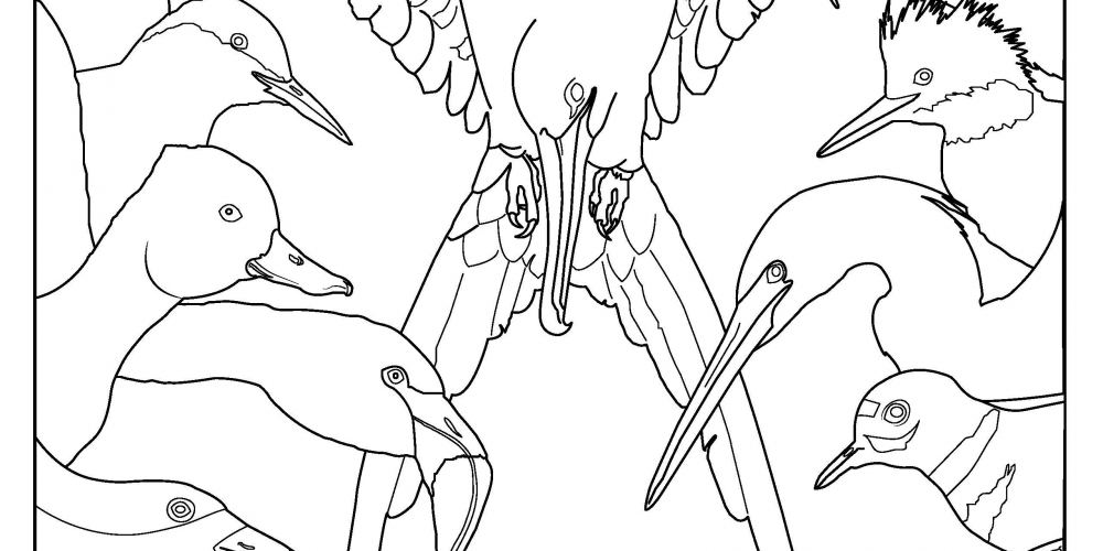 Coloring Page - WMBD Poster 2019