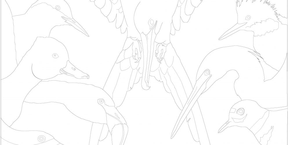 Coloring Page - Mural 2019