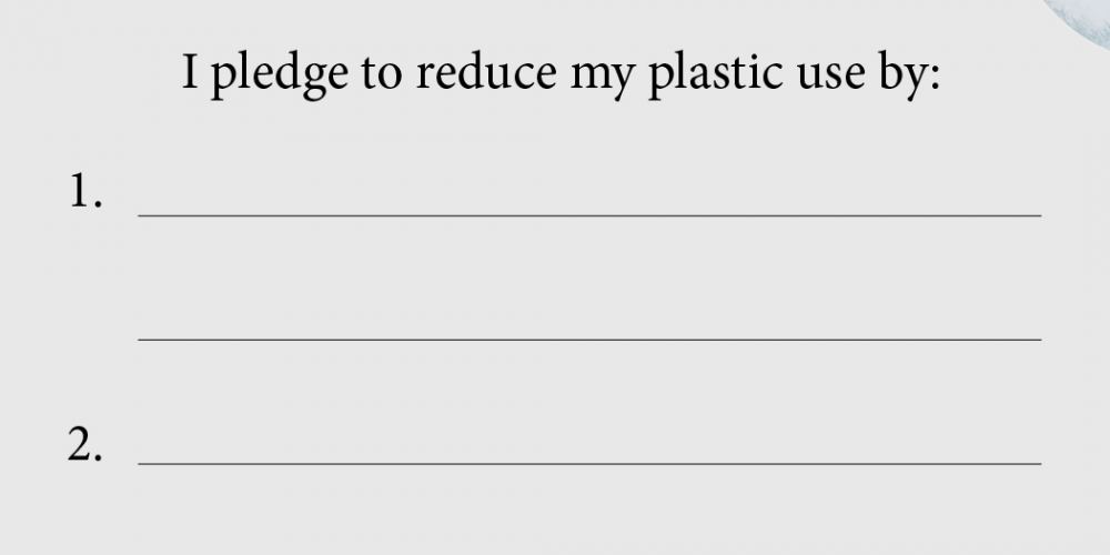 2019 Plastic Pledge
