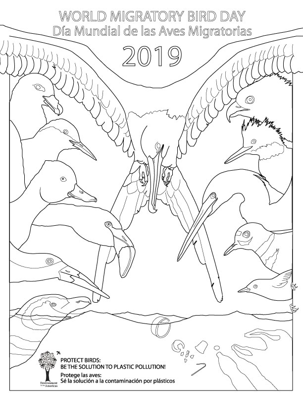 2019 Coloring Page - Bilingual