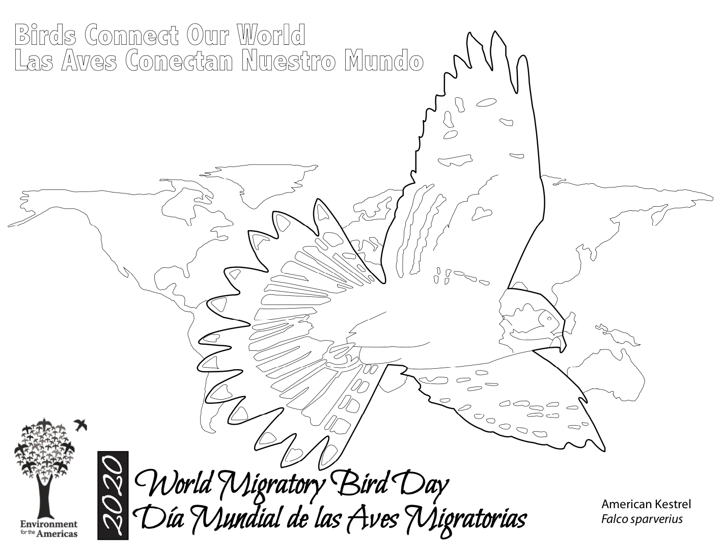 2020 Coloring Pages - Individual Species