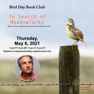 1201 In Search of Meadowlarks